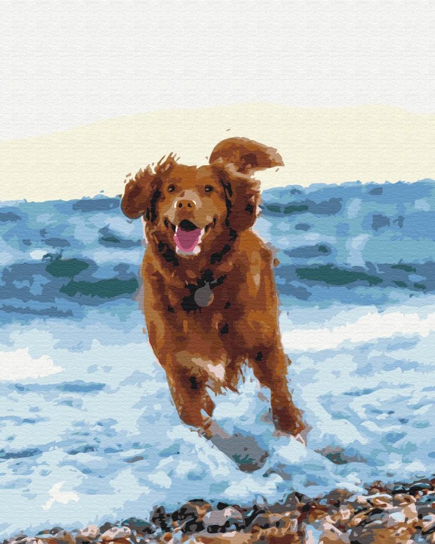 Картина за номерами Собачка в морі | BS51436