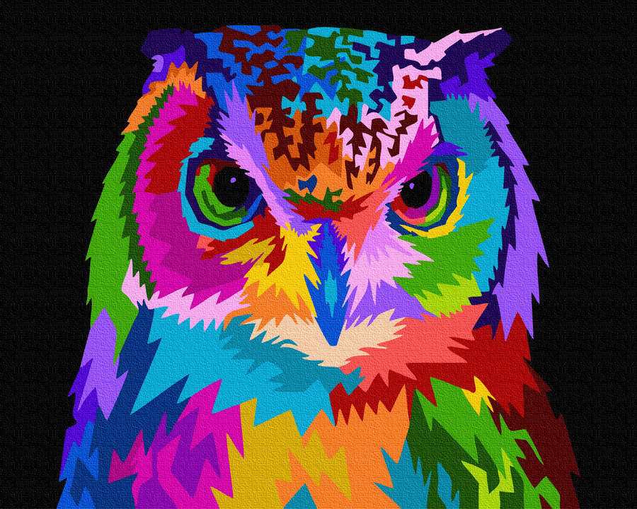 Картина за номерами Барвиста сова | GX35768