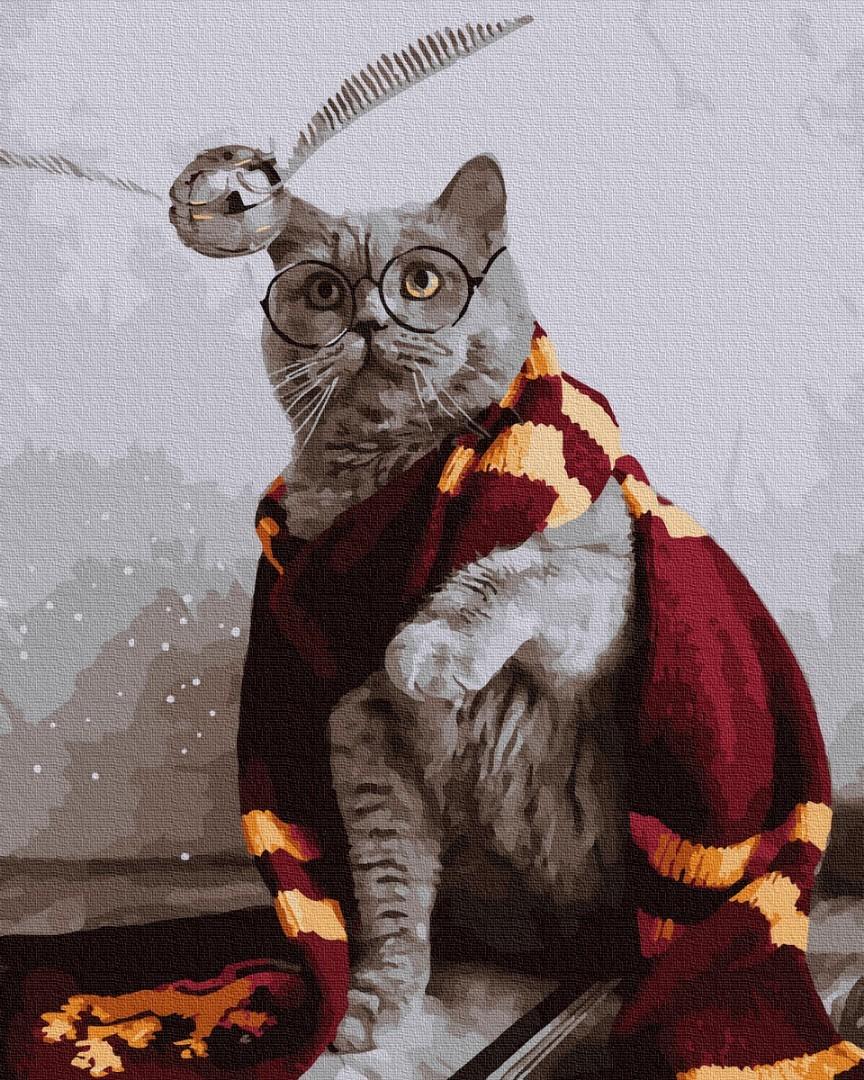 Картина за номерами Котик ловець снітчу | PGX36543