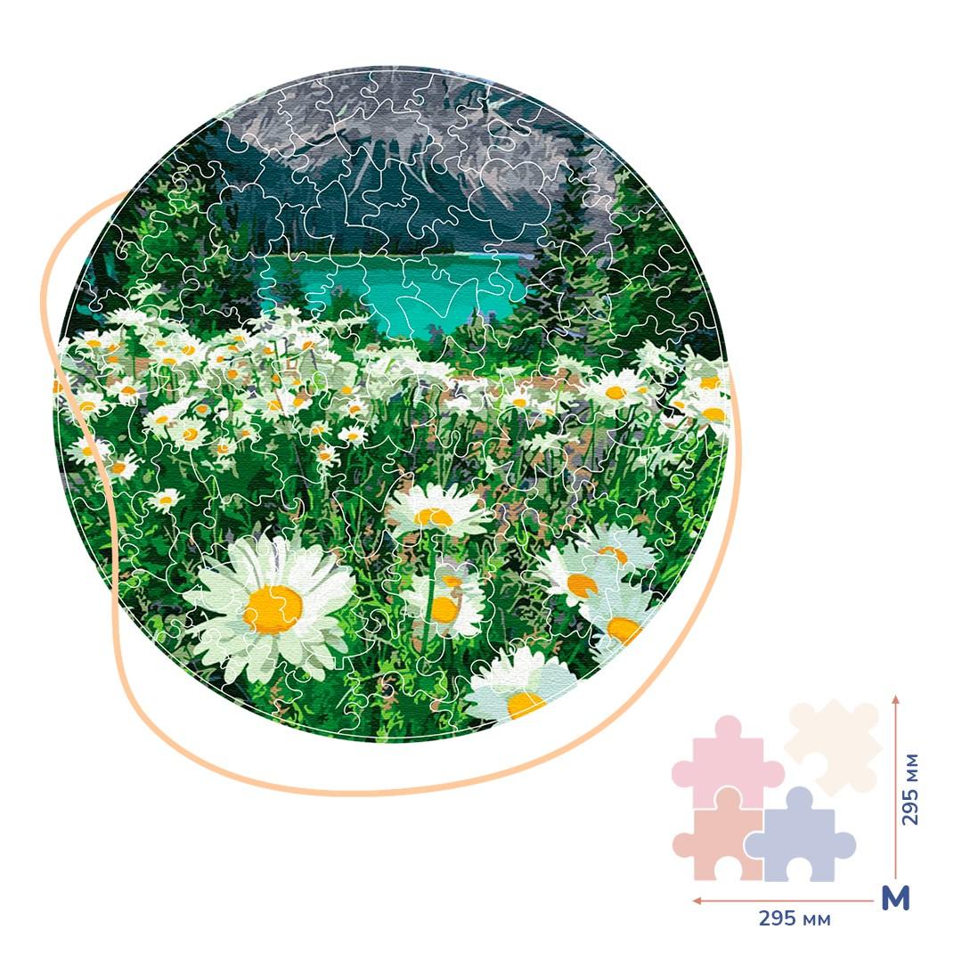 Картина за номерами Ромашки біля гір (Розмір M)   BP03M