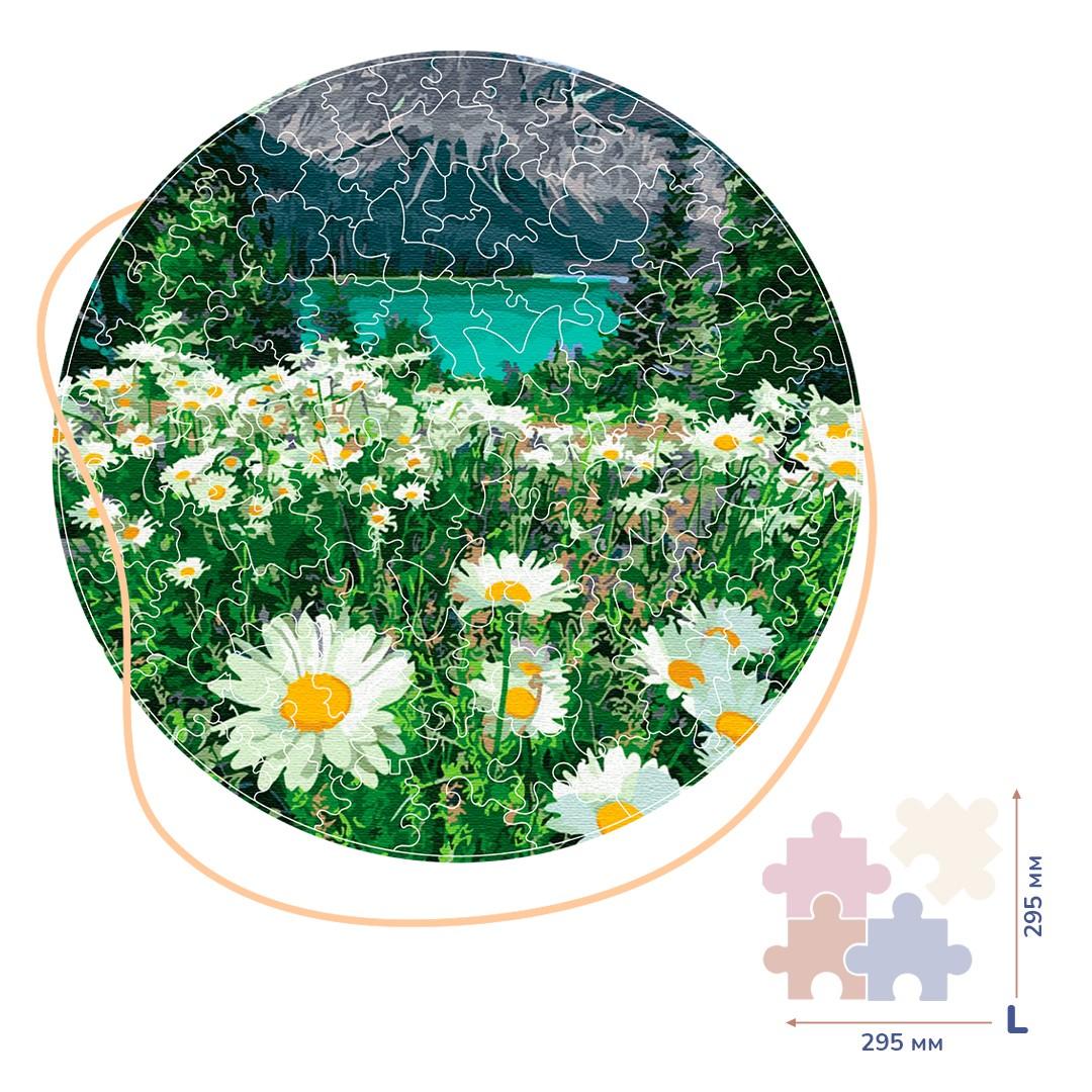Картина за номерами Ромашки біля гір (Розмір L) | BP03L