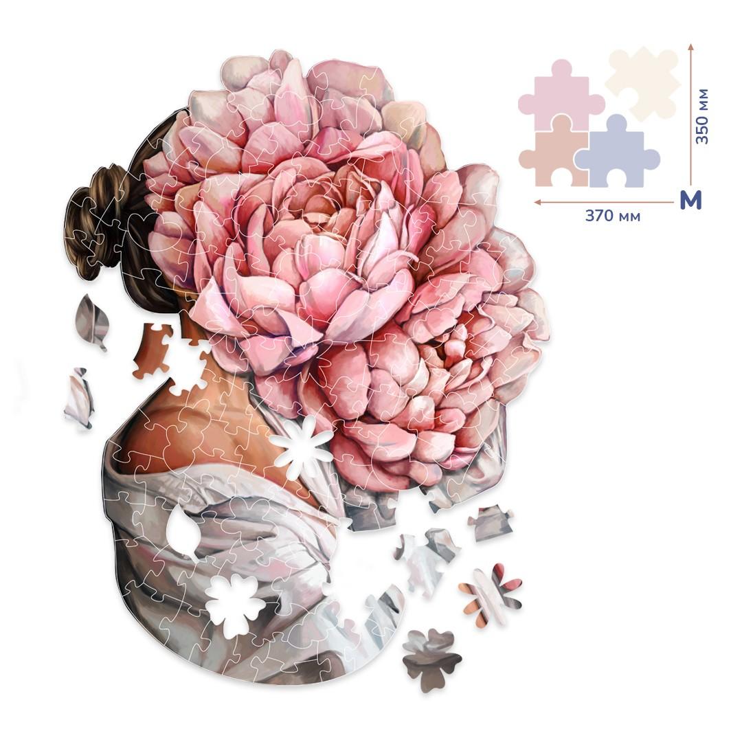 Картина за номерами Загадка піонів (Розмір M) | BP06M